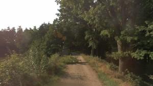 Hráz Pěnenského rybníku, na které došlo k popravě polského zajatce.