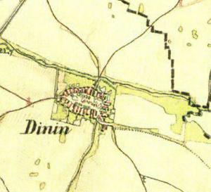 dynín